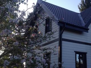 Строительство каркасного дома по проекту КД-007 в пос. Парголово