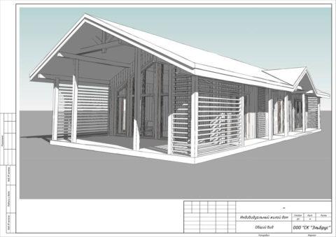 Каркасный дом по индивидуальному проекту в ДНТ «Коттеджный поселок ЗОЛОТЫЕ ПЕСКИ» - Общий вид